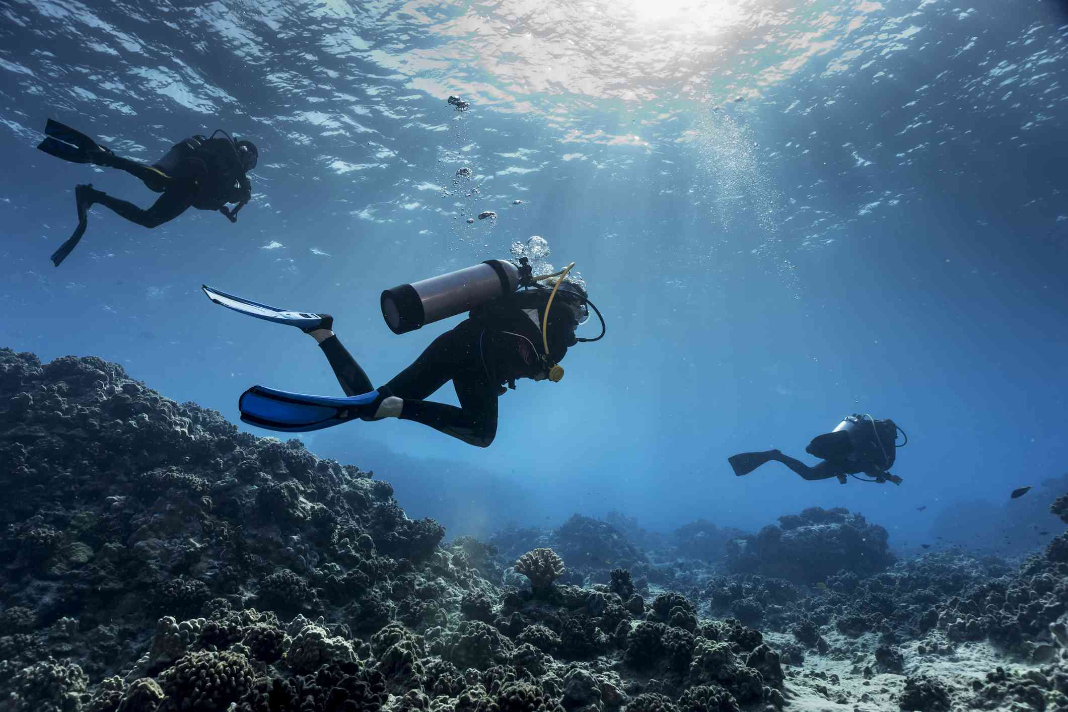 Scuba divers from Big island Divers swimming along the edge of a coral reef off the Kona coast