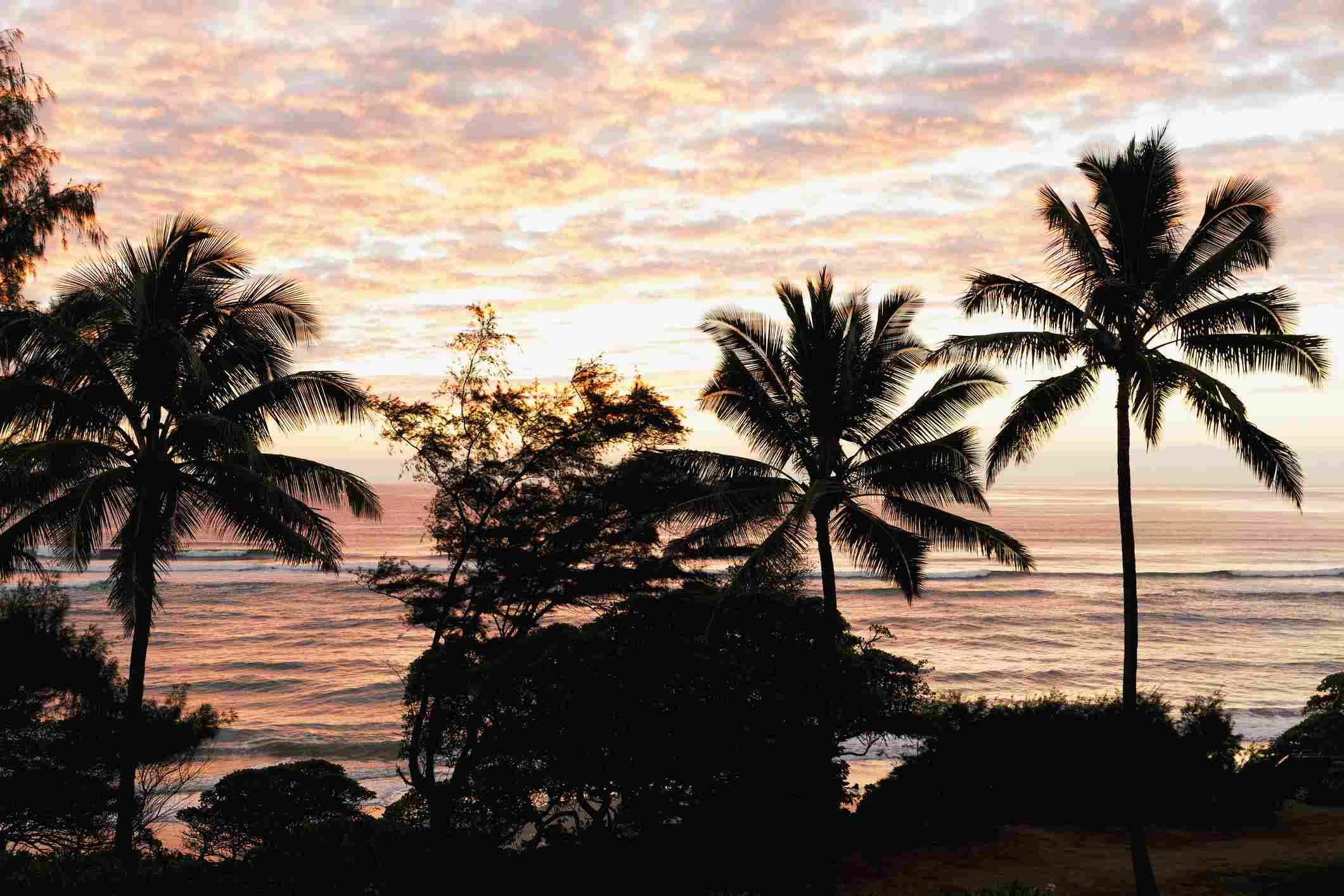 Morning sunrise through the palm trees along Lydgate Beach