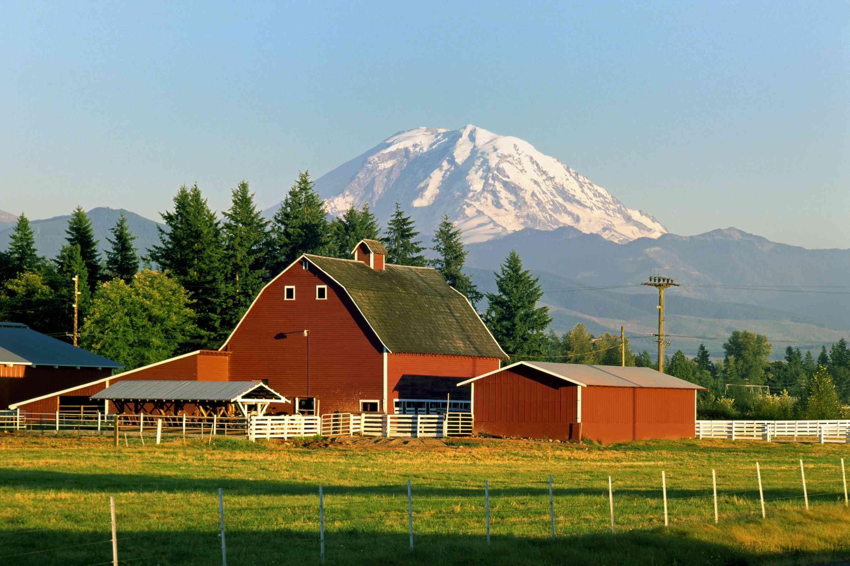 Washington State farm with Mt. Ranier in background