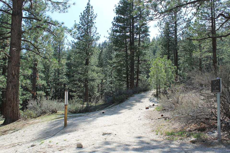 Davis Creek Park