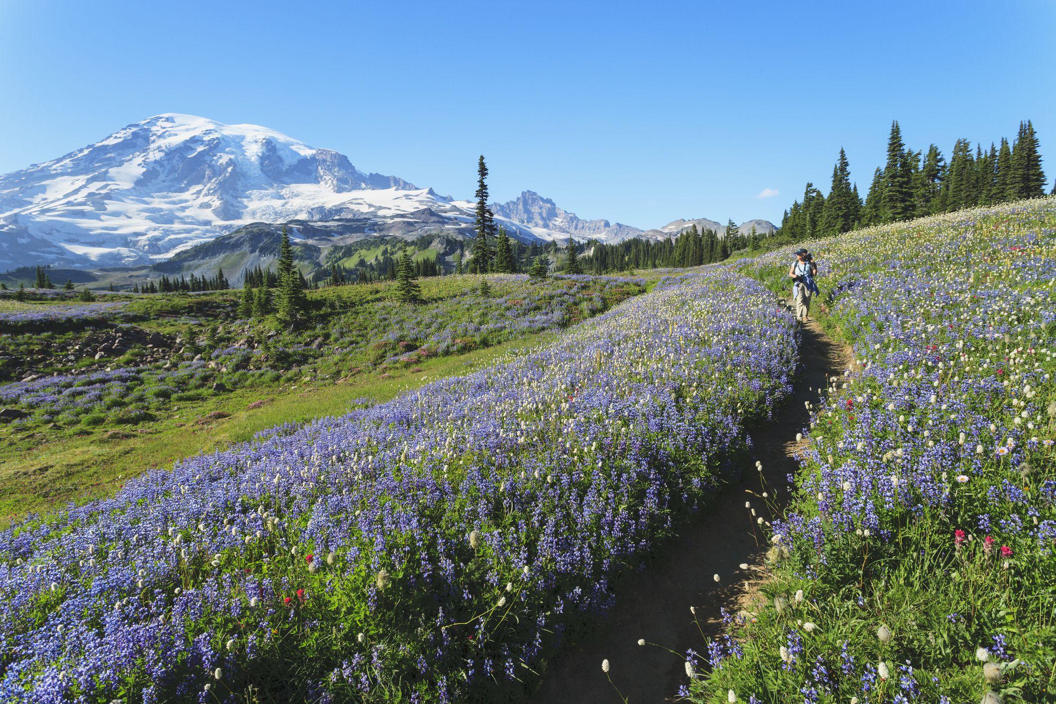 Mountain Getaways in Washington State