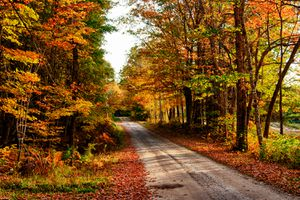 Fall in Bethel, Maine