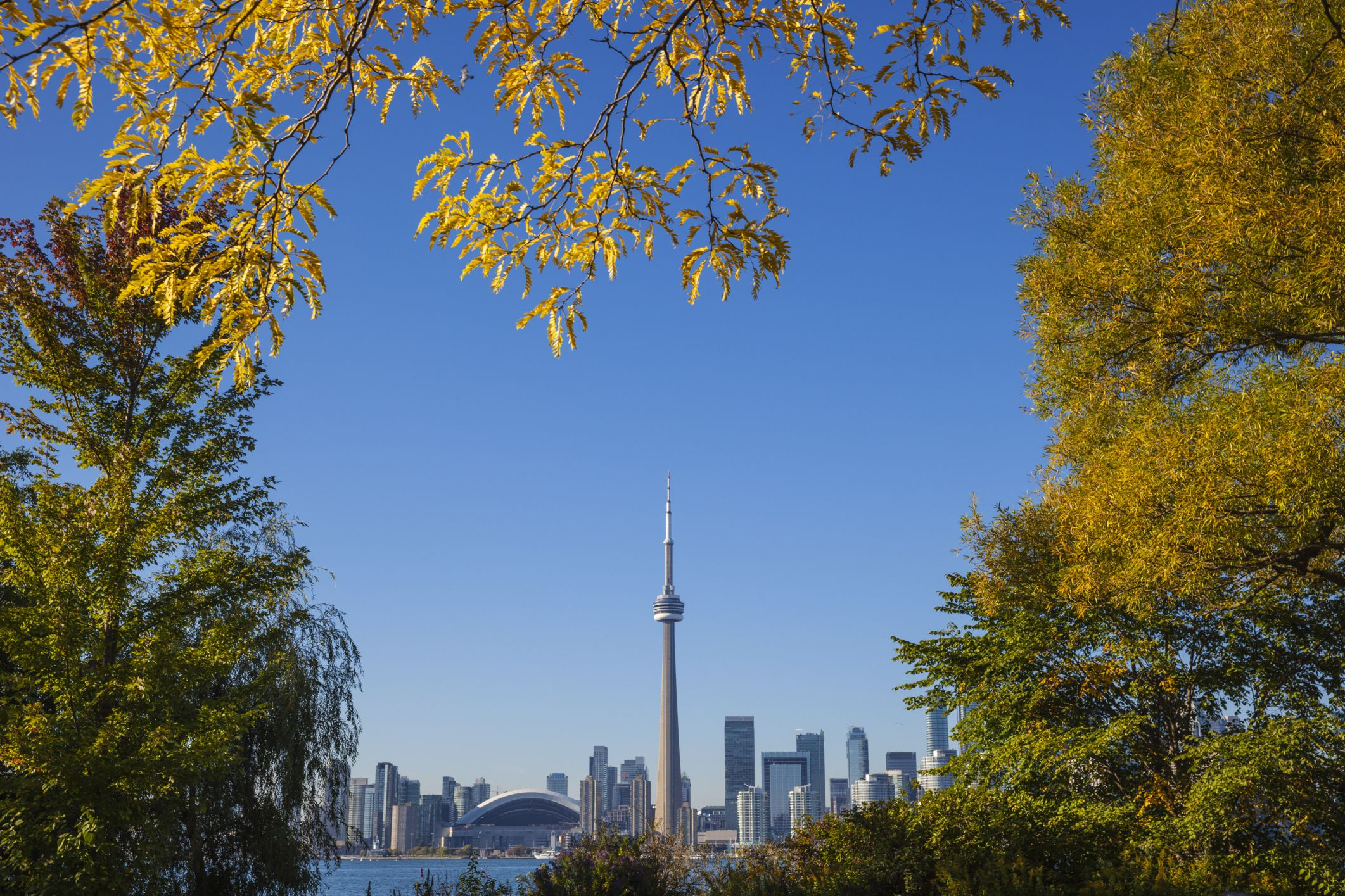 Where to See the Fall Colors in Toronto