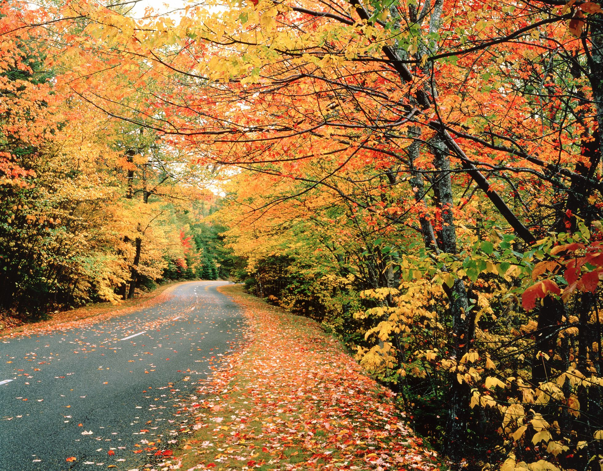 12 Amazing Trips to Take This Fall to Avoid Big Crowds