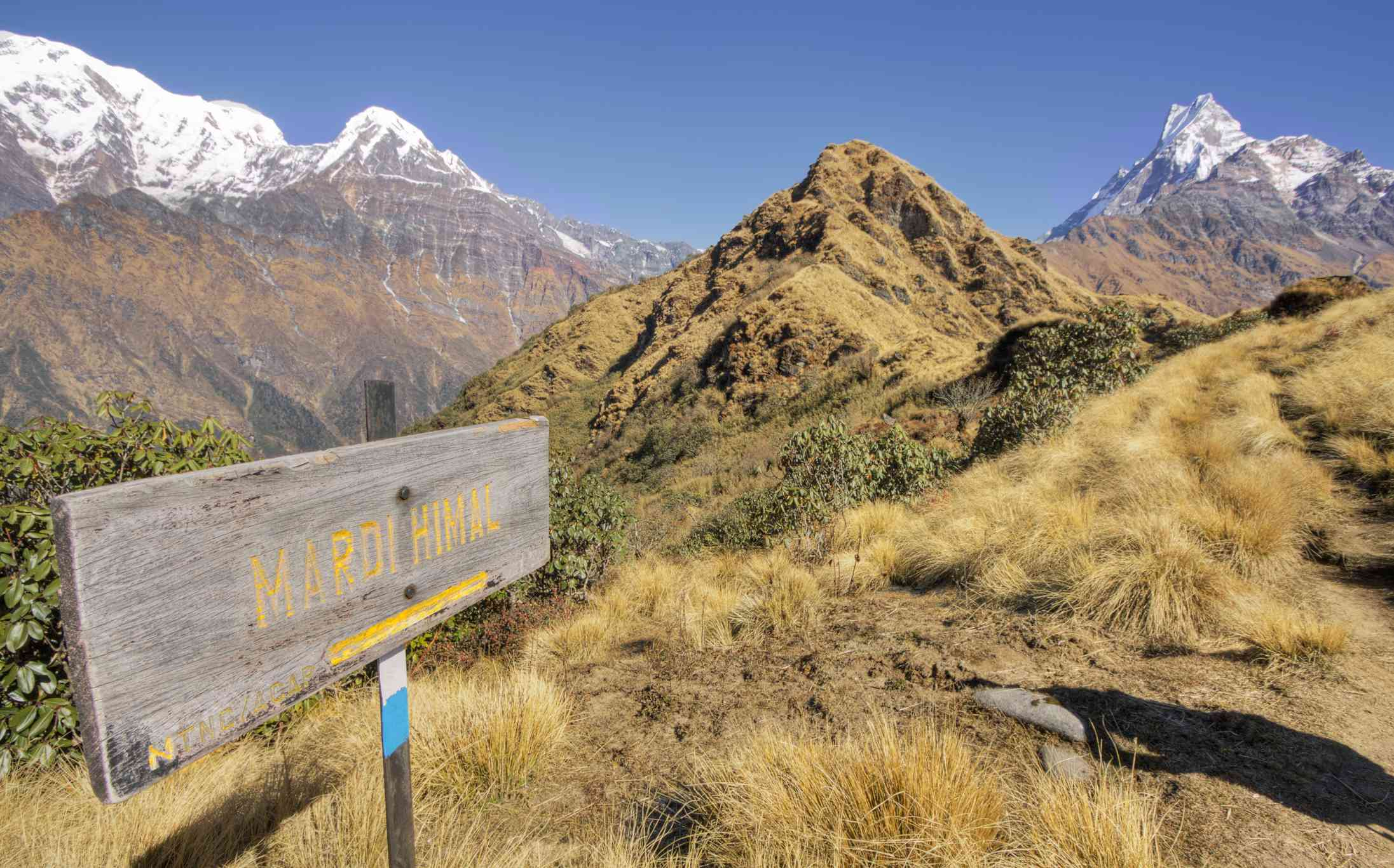 grass and snow-covered mountains with wooden sign that reads Mardi Himal