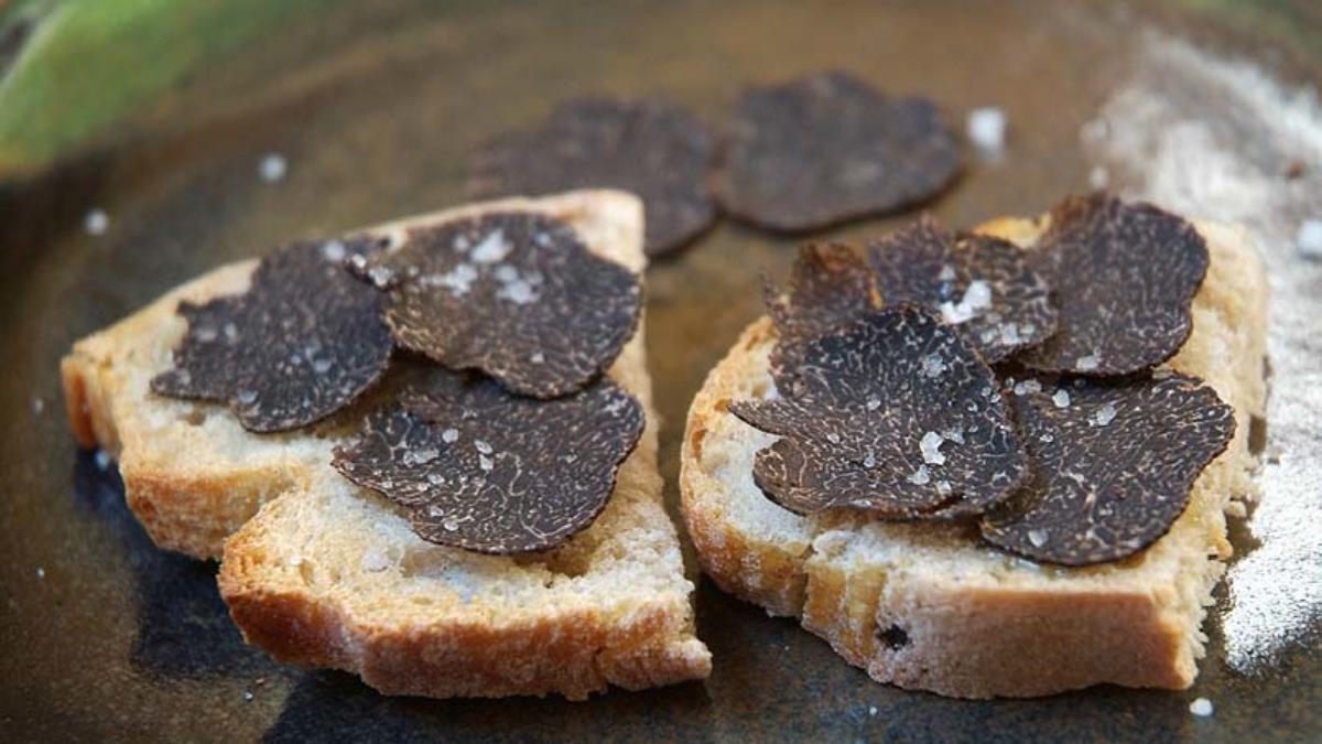 Black truffle from Perigord on toast: a speciality at the Sarlat Truffle Festival