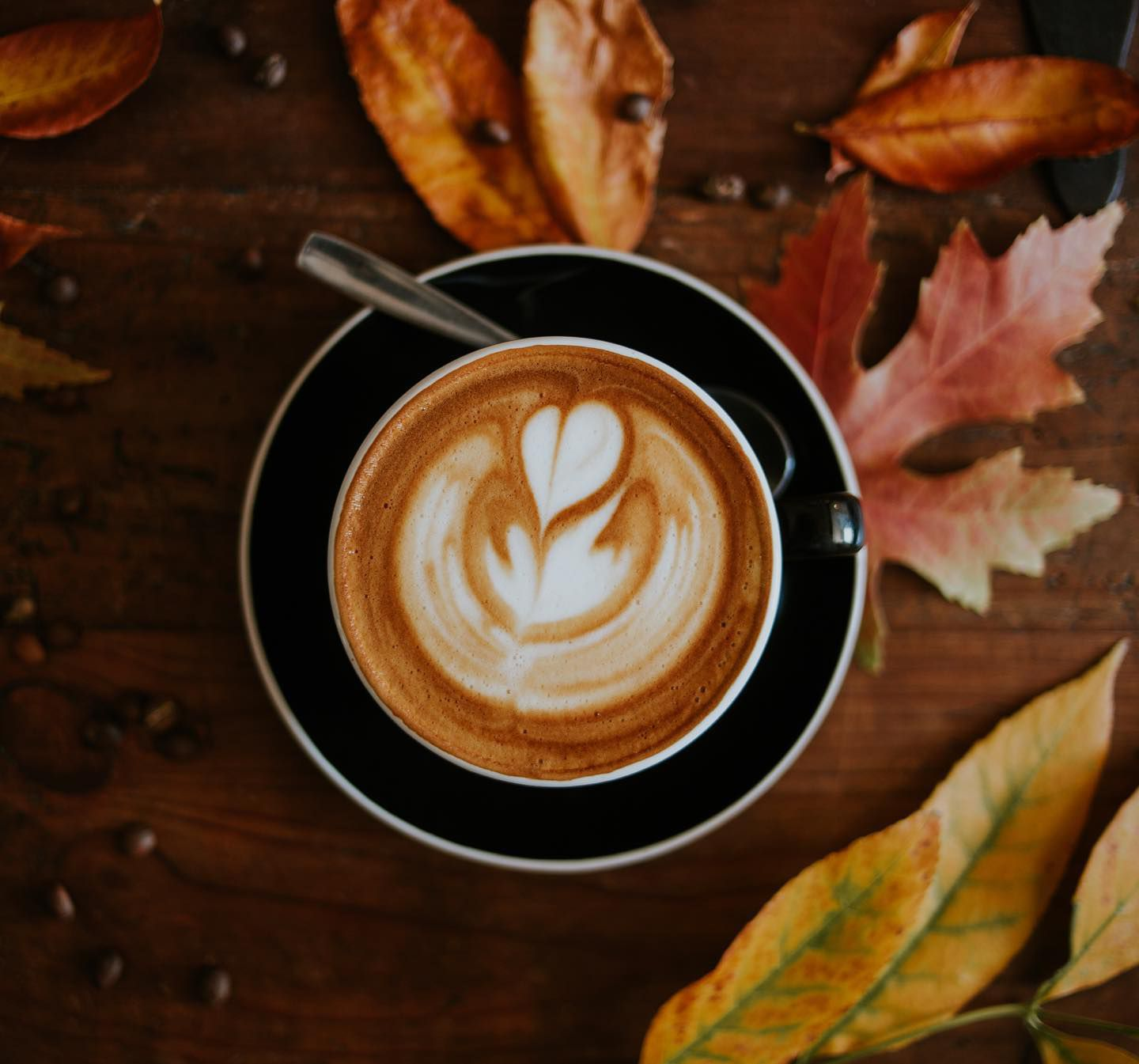 Latte art with leaves behind it