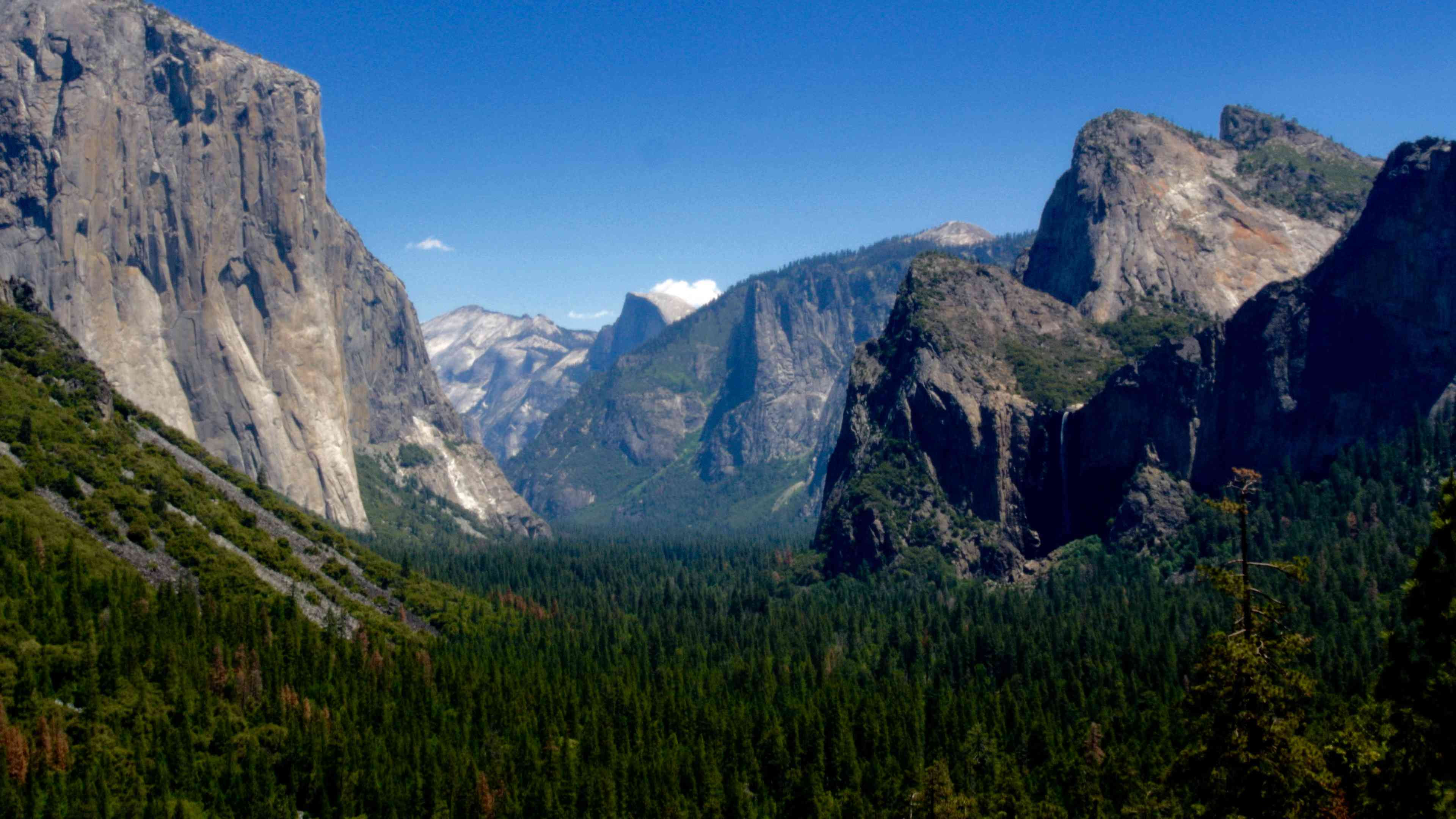Massive rock formations and climbing walls in the Yosemite Valley