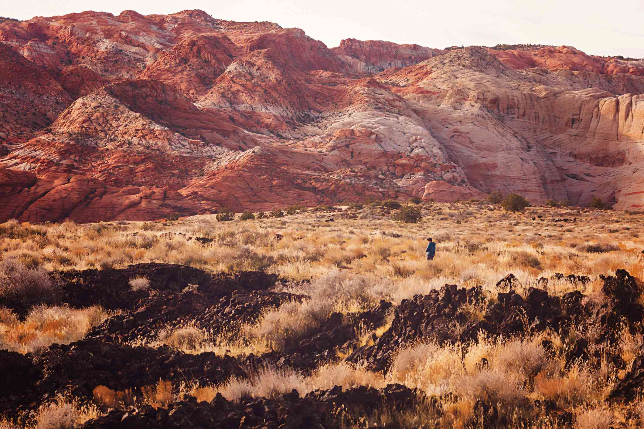 Boy hiking alone in the wilderness through sage brush with a large sandstone rock in the background