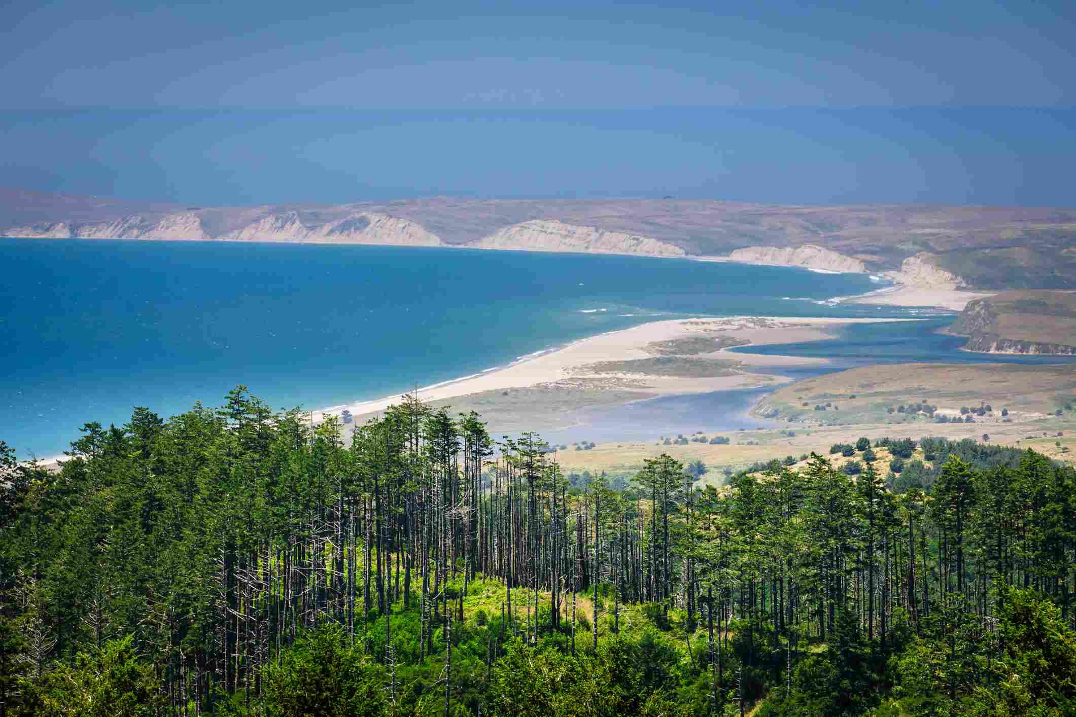 Point Reyes: Limantour Beach & Drakes Beach Cliffs