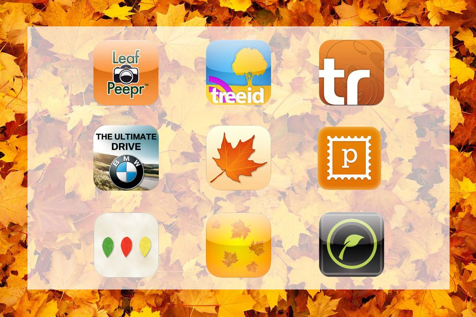 Fall foliage apps
