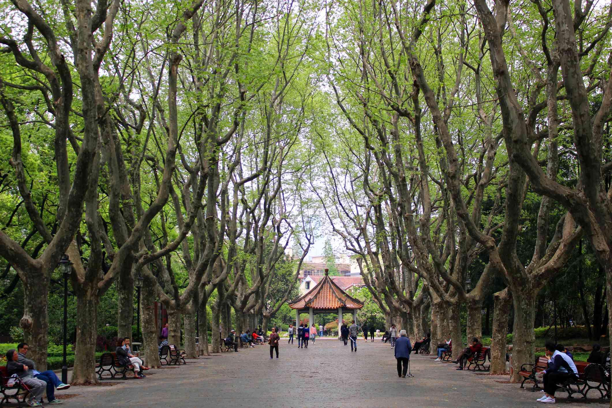 Xiangyang Park, Shanghai