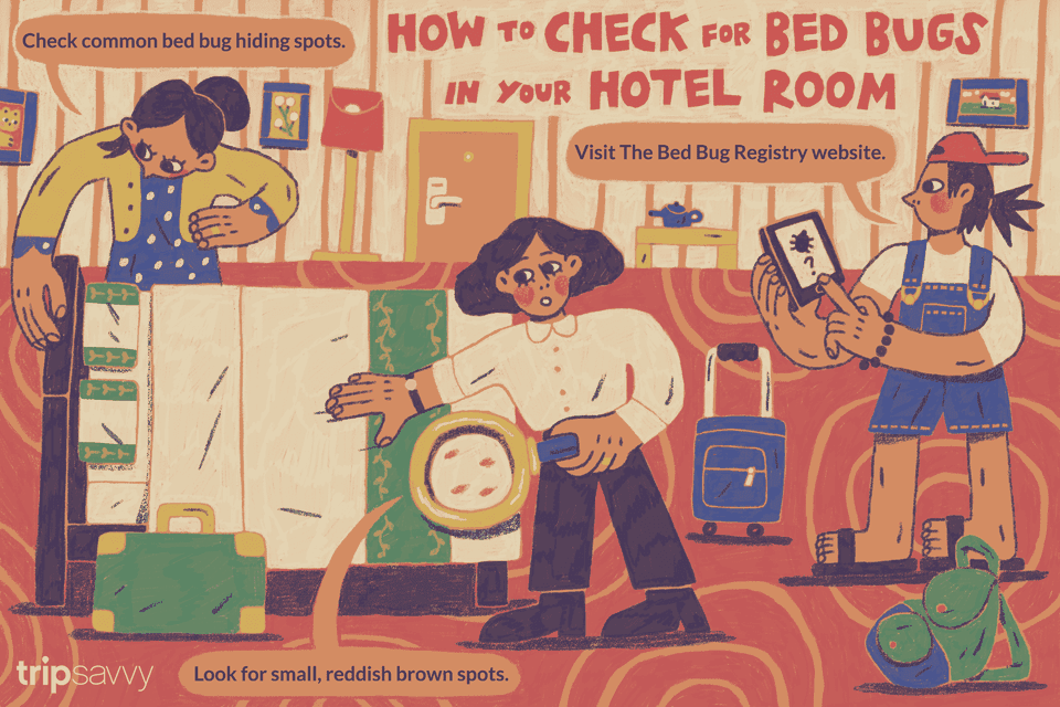 How To Look For Bed Bugs In Your Hotel Room