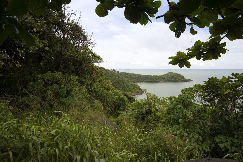 Jungle Beach in Sri Lanka