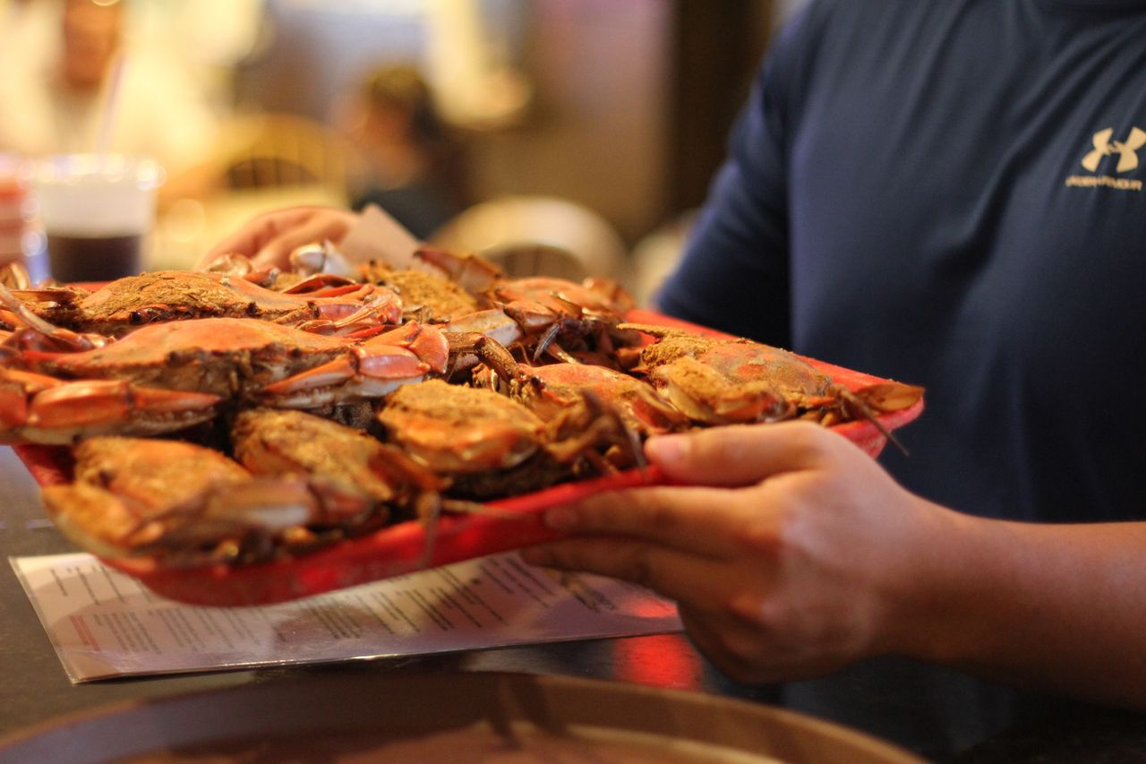 person holding a tray of Baltimore crabs