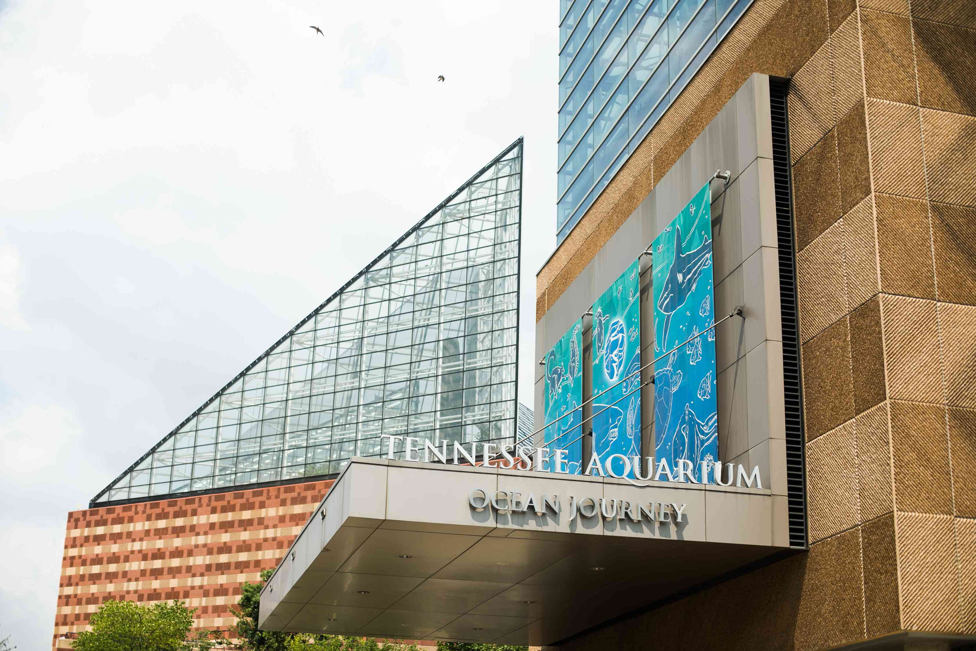 Entrance to the Tennessee Aquarium