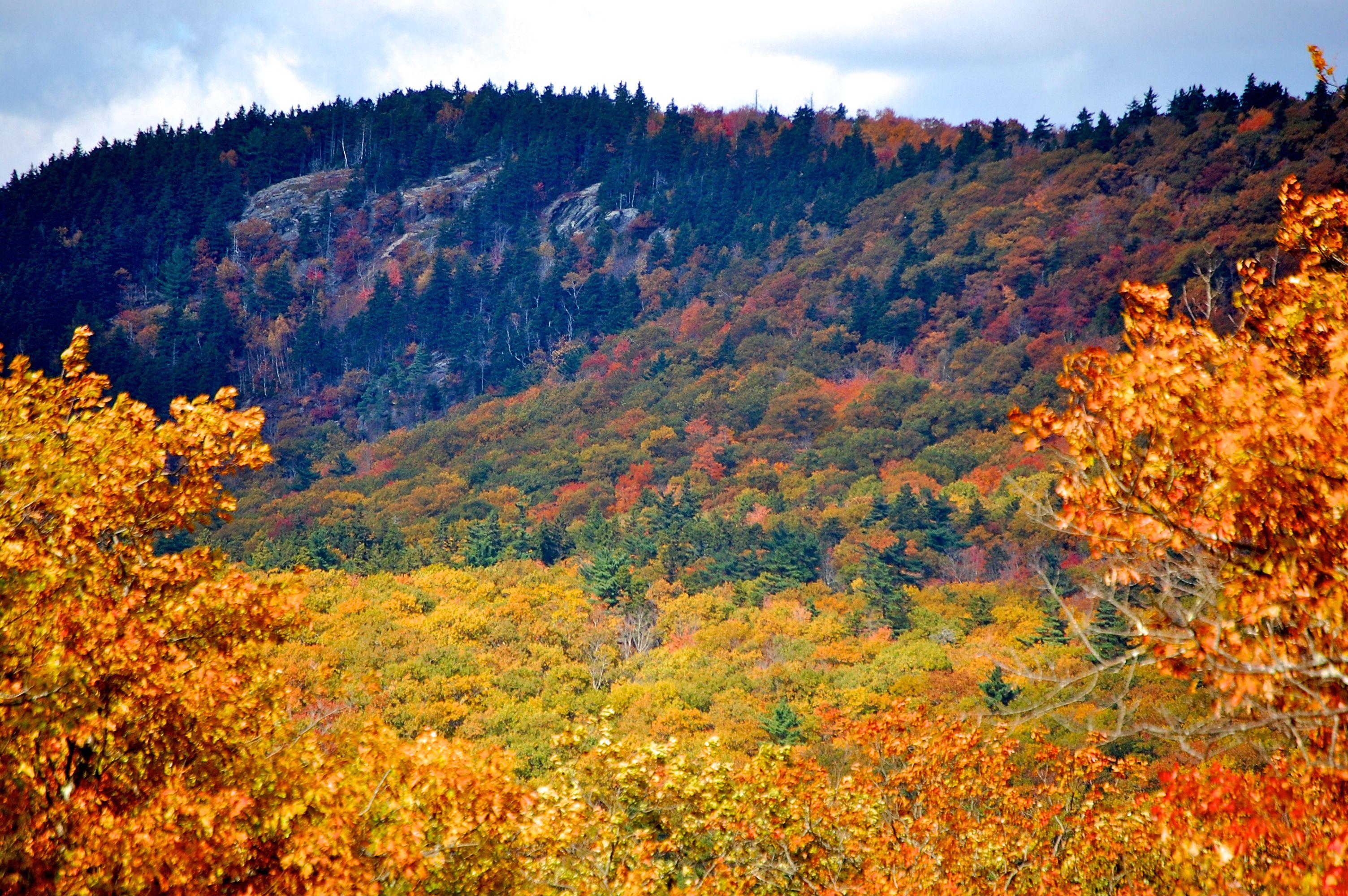 Camden Hills State Park in Autumn