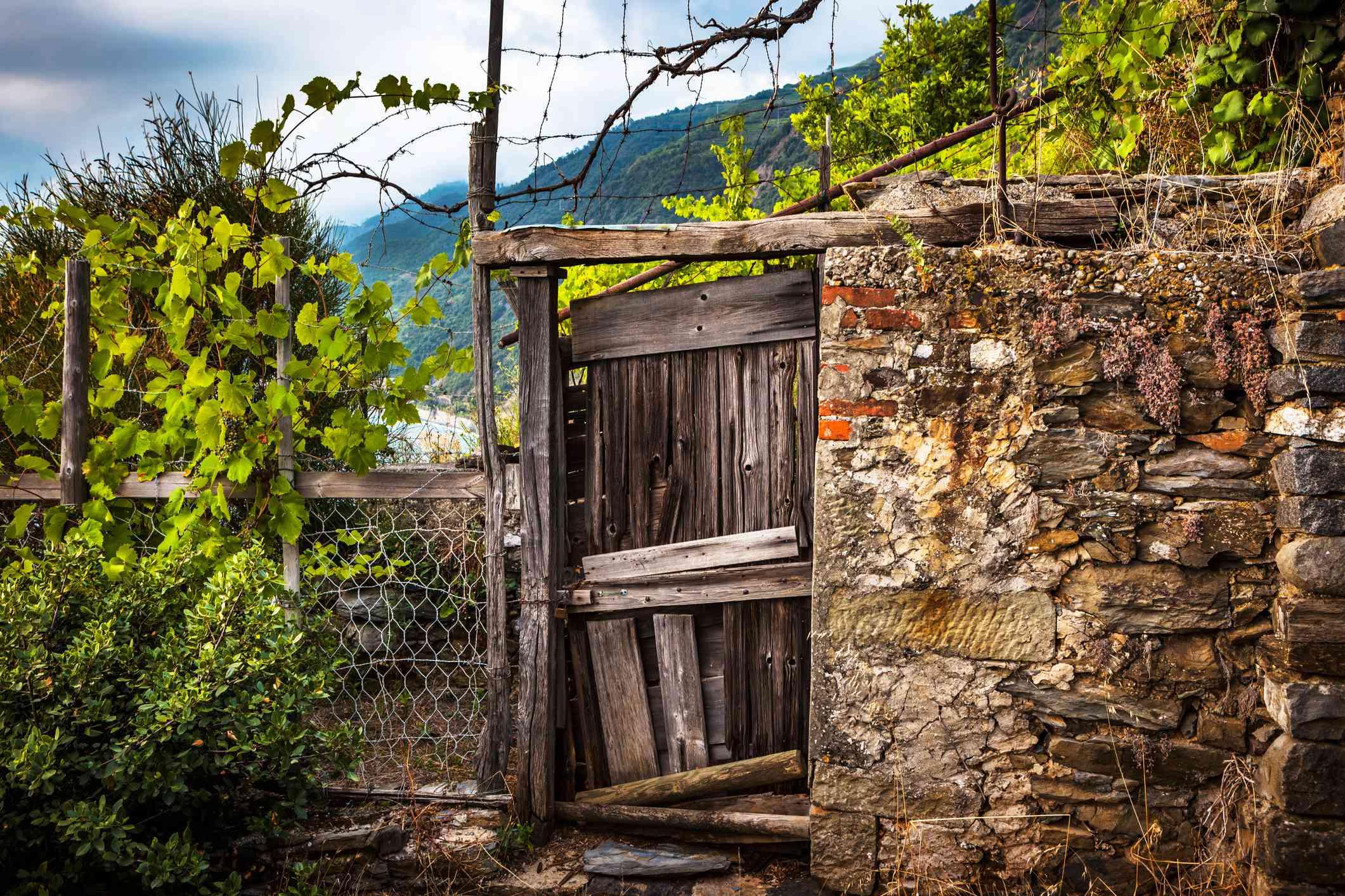 Old gate in Manarola