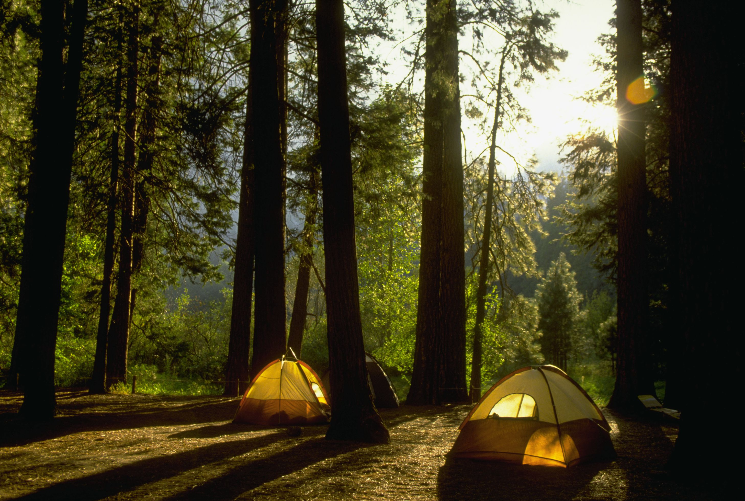 Yosemite Campgrounds What You Need To Know