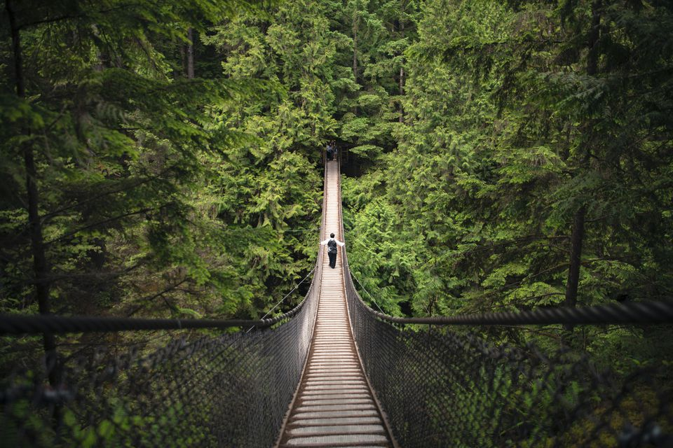Lynn Canyon Suspension Bridge, North Vancouver