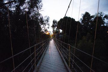 Spruce Street Suspension Bridge