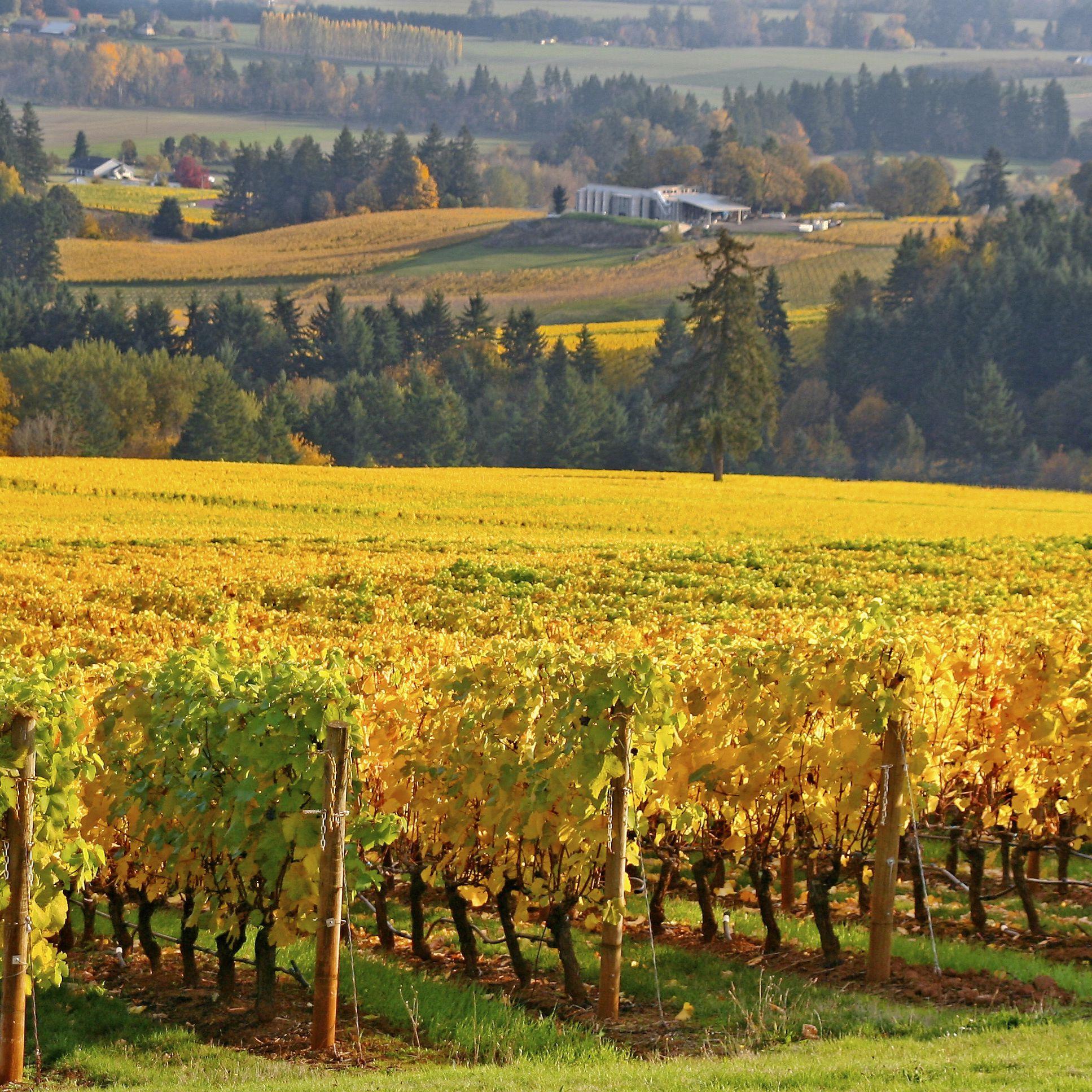 The Best Romantic Getaways in the Pacific Northwest
