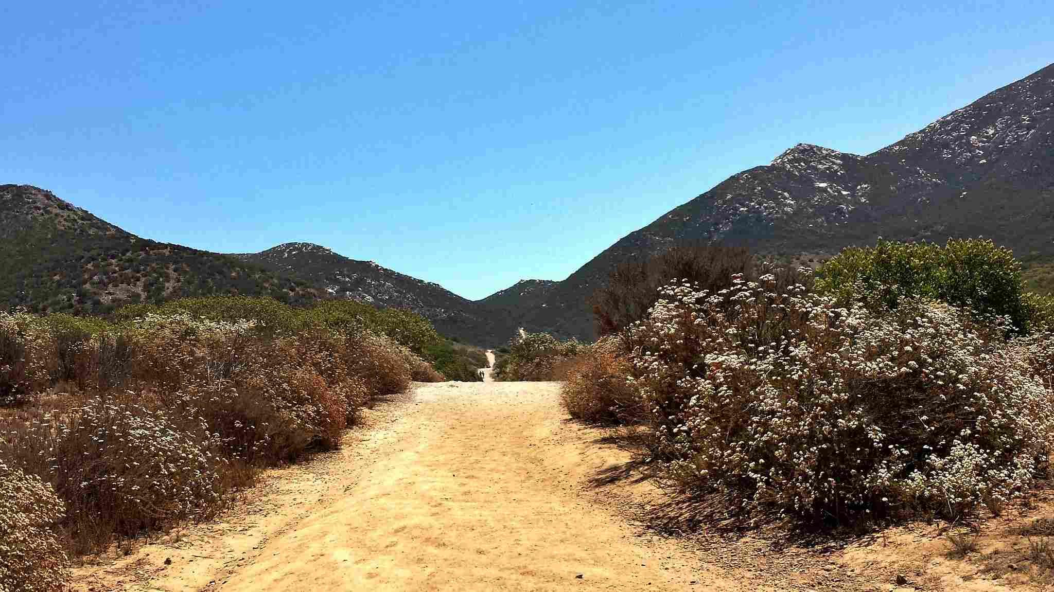 Iron Mountain Hiking Trail