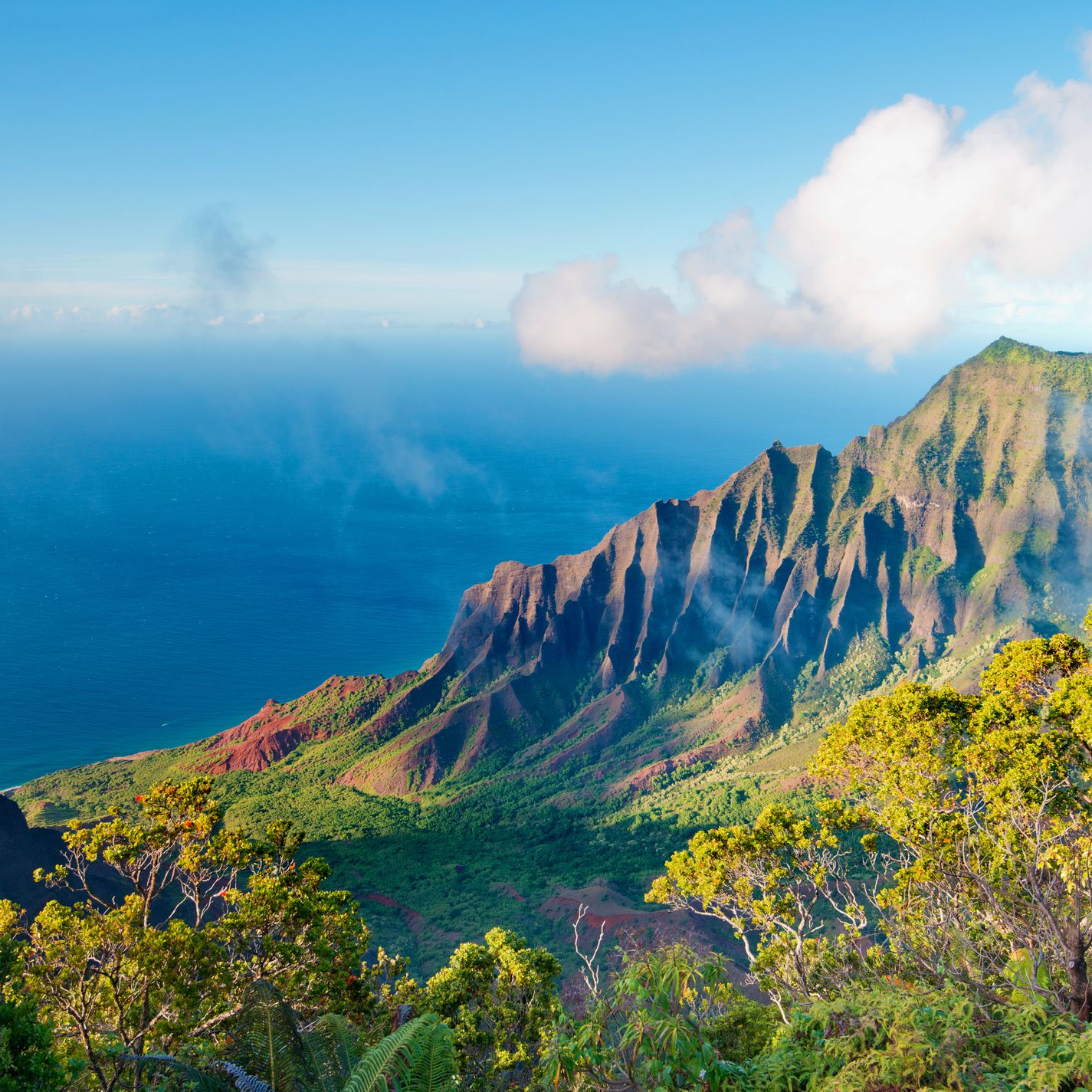 Your Trip to Kauai: The Complete Guide