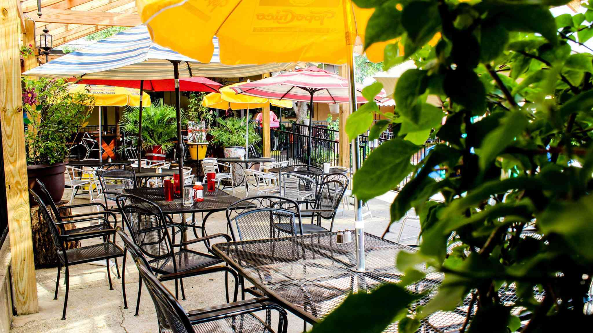 Outdoor metal chairs and tables with umbrellas with a plant covering the left third of the image