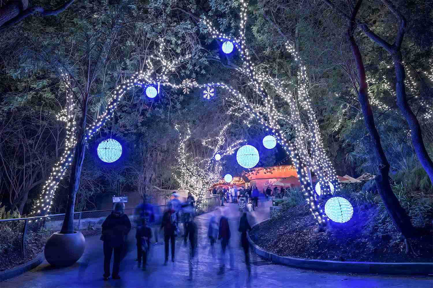 Zoo Lights at the Los Angeles Zoo