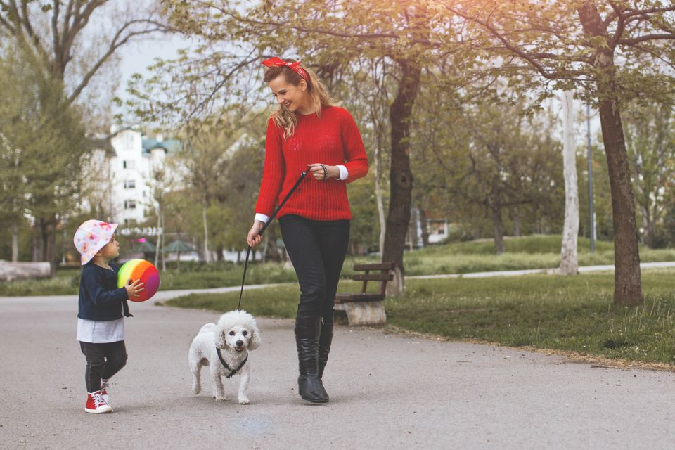 Joven madre y su hijo caminando en el parque con perro