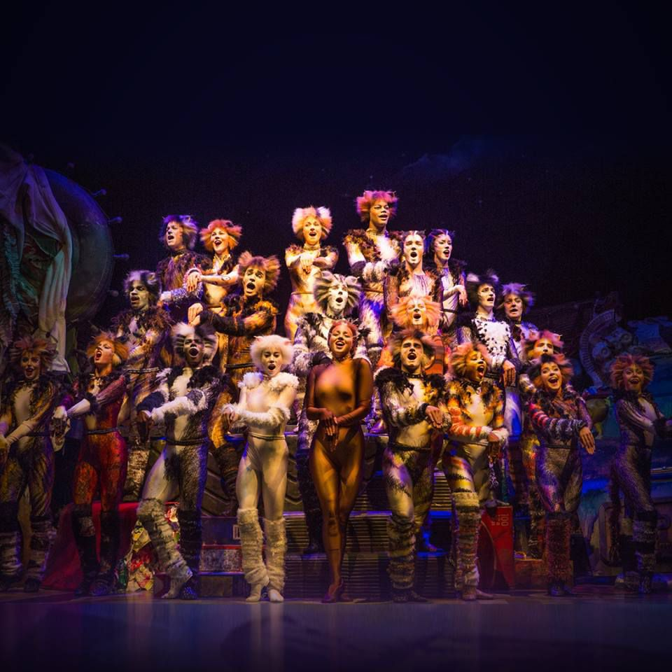 Best Broadway Shows in NYC -- Cats
