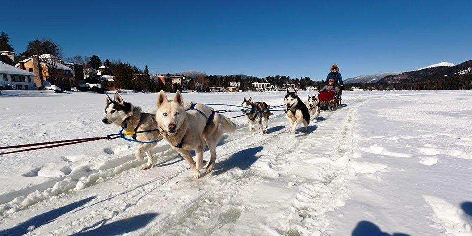 Dogsledding on frozen Mirror Lake