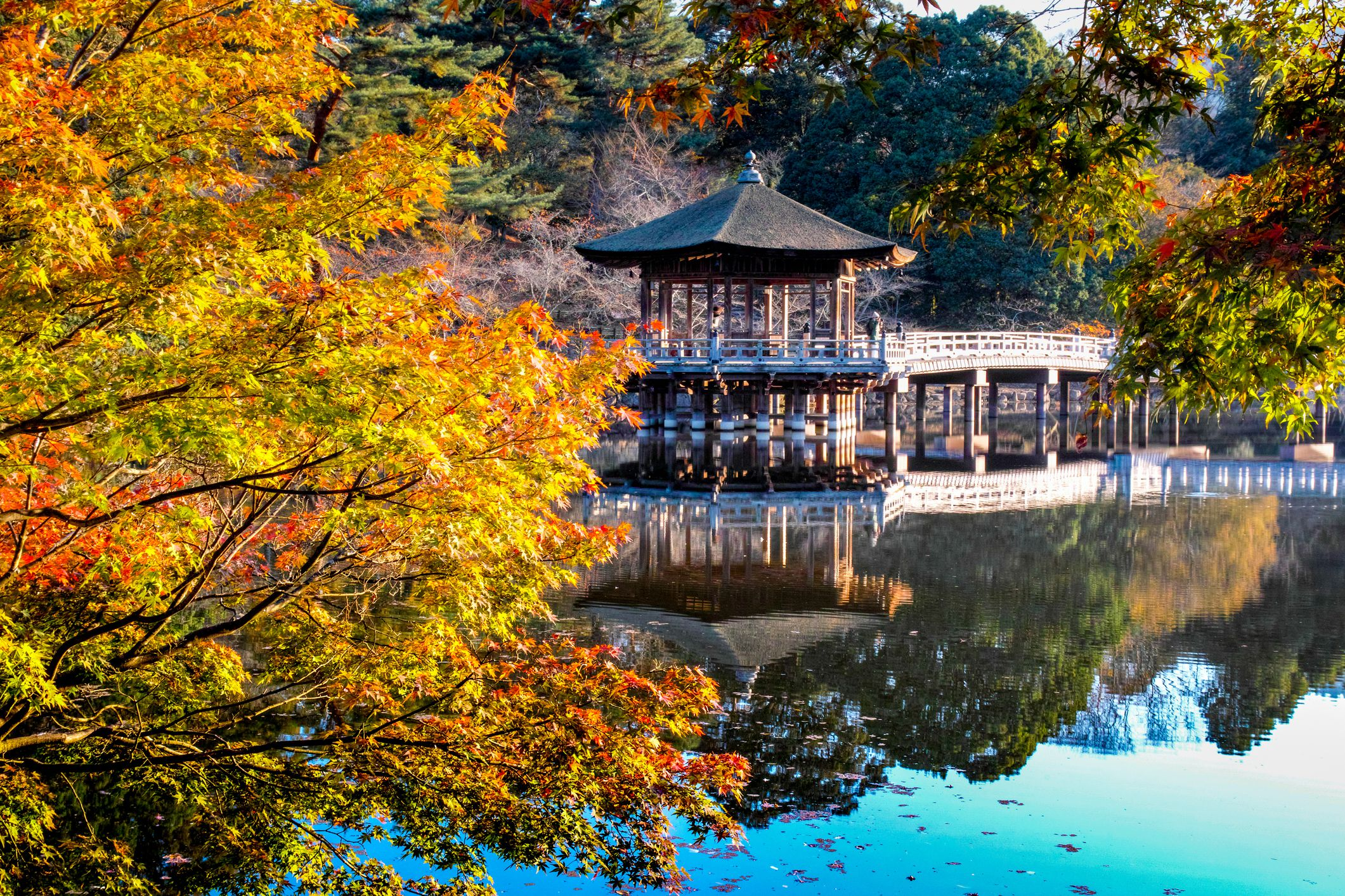 The 12 Best Day Trips From Osaka