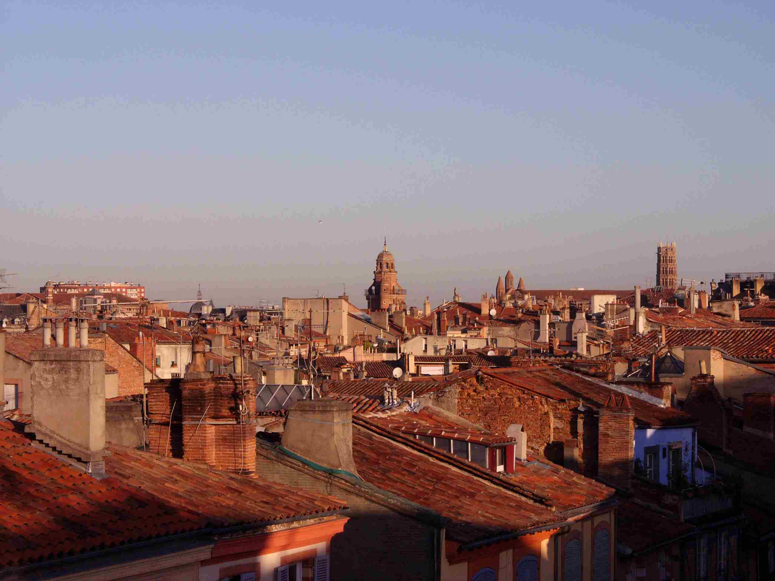 Rooftops of Toulouse, France