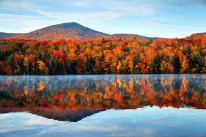Fall colors in forest reflected on lake