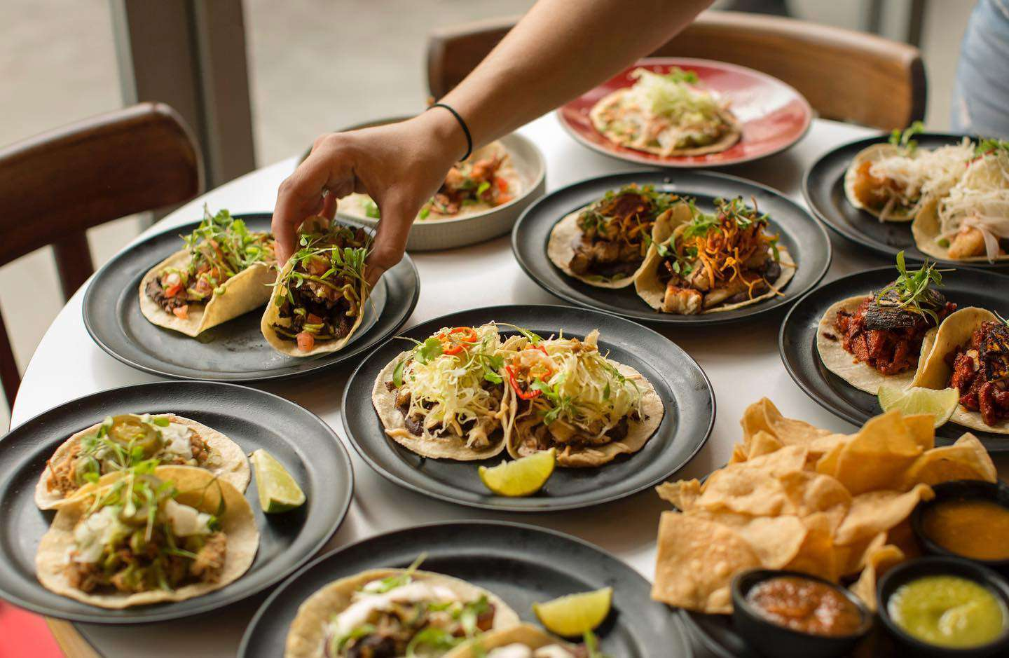 A hand picking up a taco from a table filled with different tacos