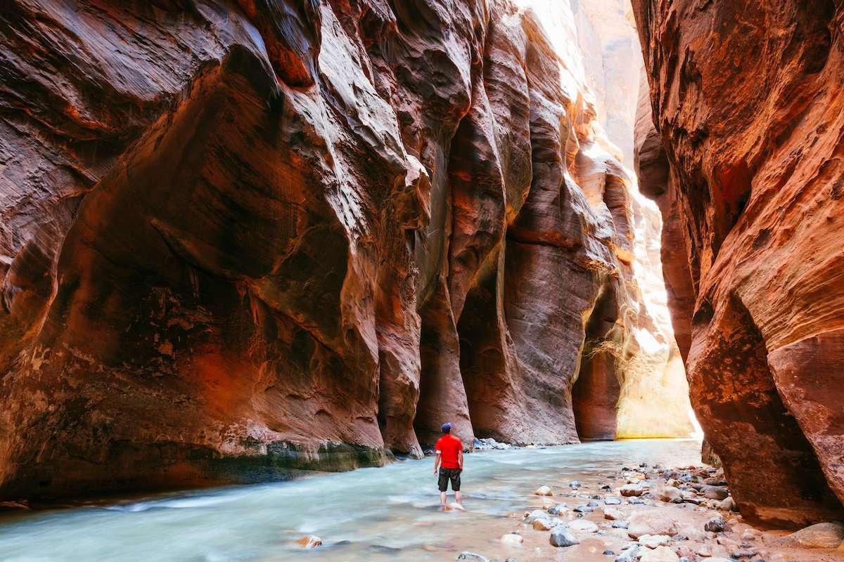A lone hiker walks through a gorge as a river flows through the Zion Narrows