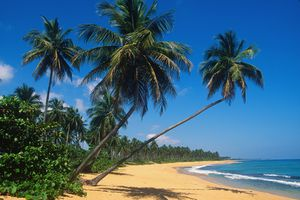 A beautiful beach on Isla Verde, Puerto Rico