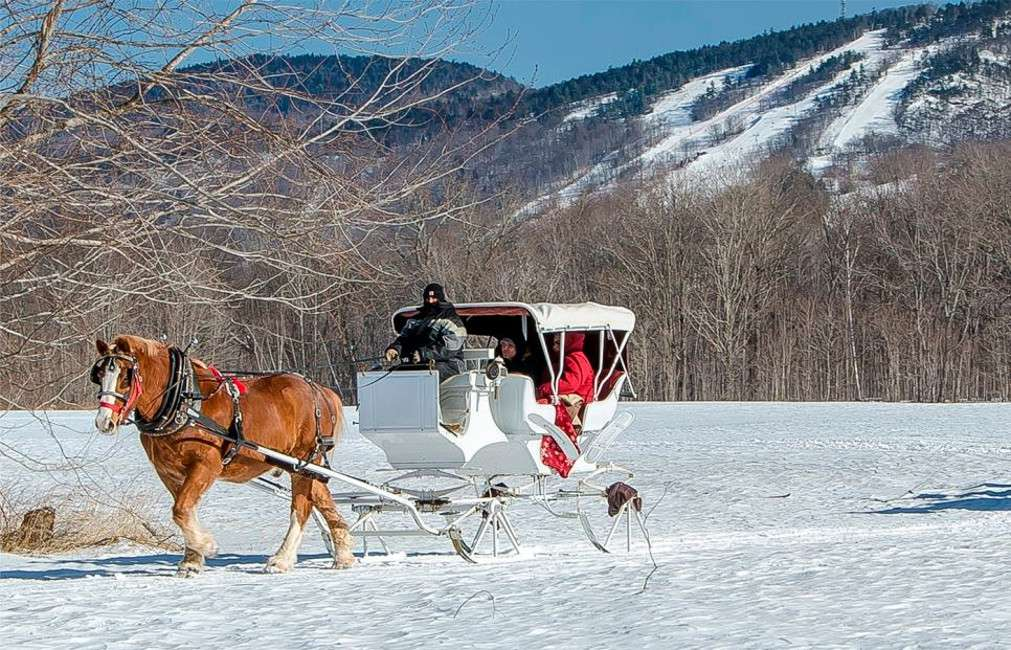 Farm by the River Bed & Breakfast Sleigh Ride