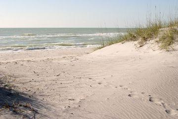 Sand Dunes on Gulf of Mexico, Caspersen Beach, Venice, Florida