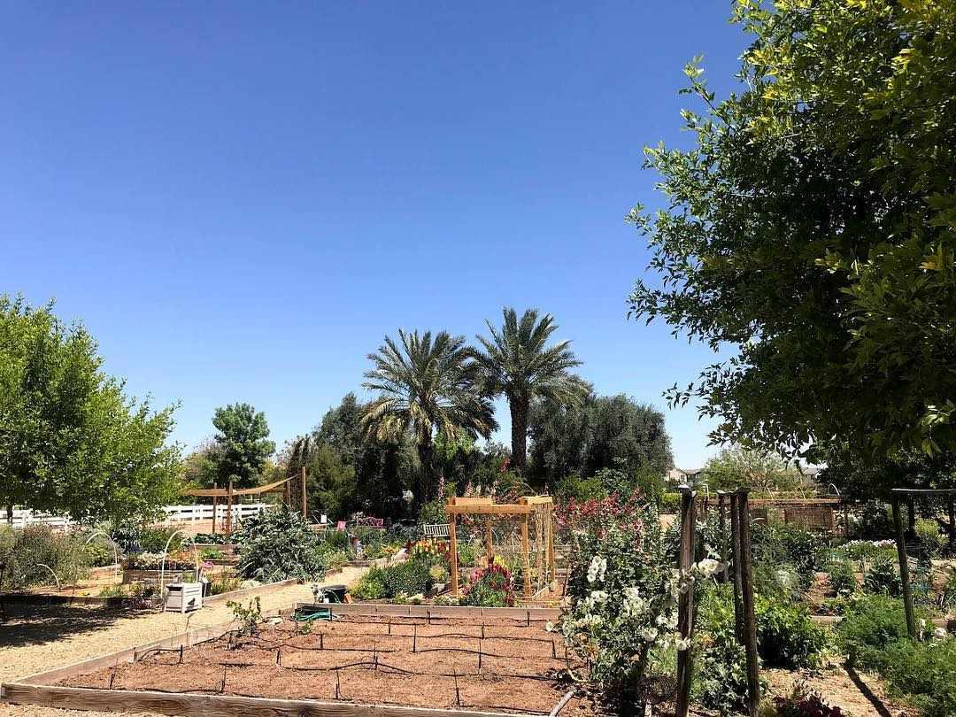 The Farm at Agritopia Phoenix