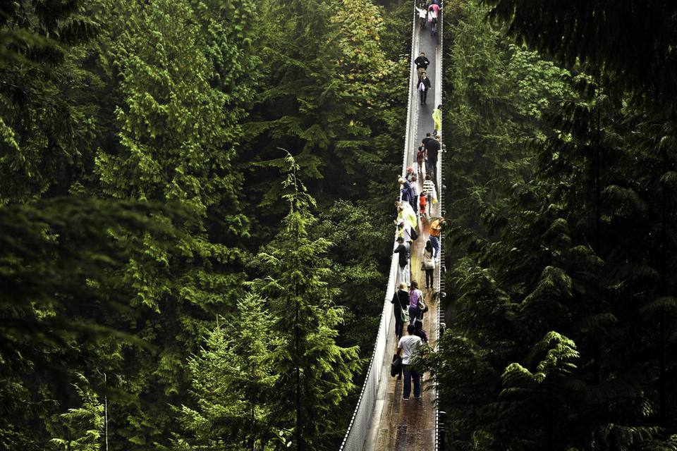 Capilano Suspension Bridge Park, North Vancouver, British Columbia, Canada