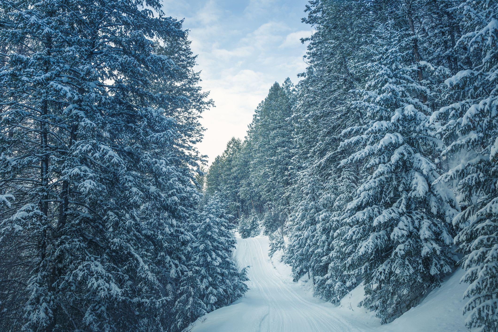 winter snowmobile trail