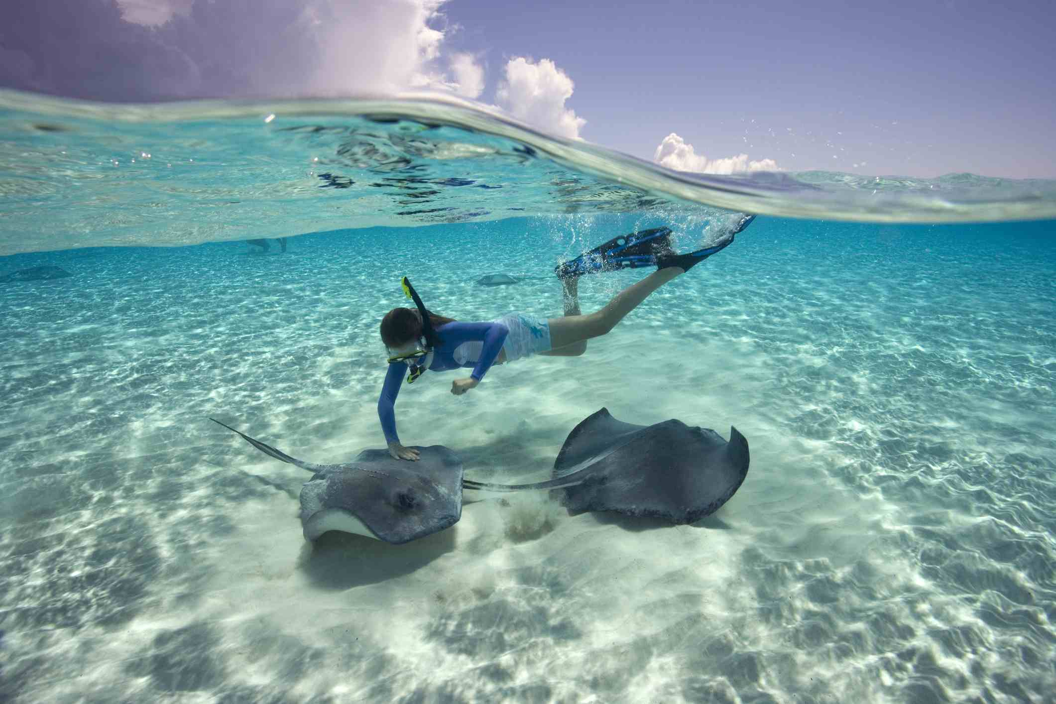 Woman snorkeling with southern stingray
