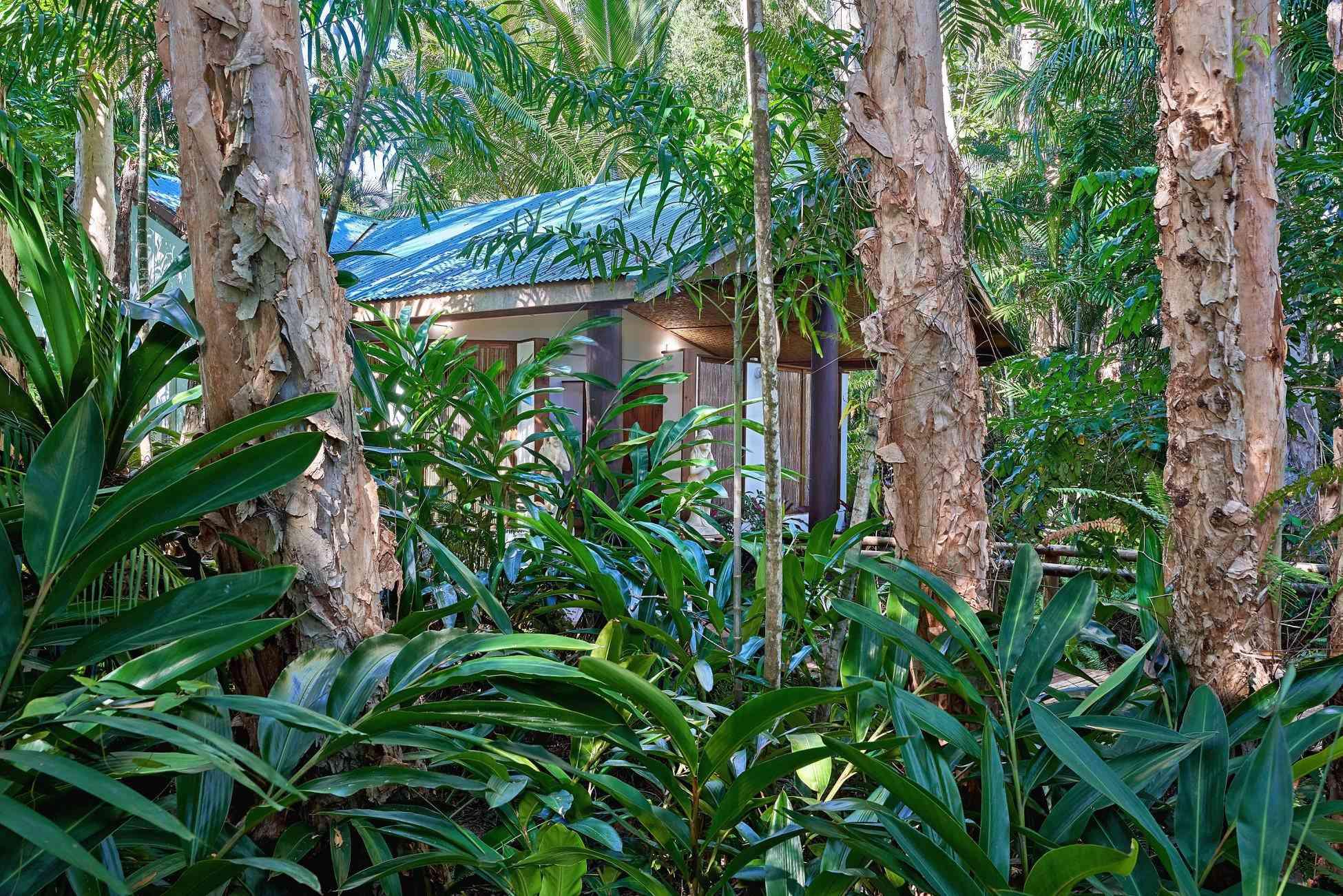 Day spa ubicado dentro de la selva tropical