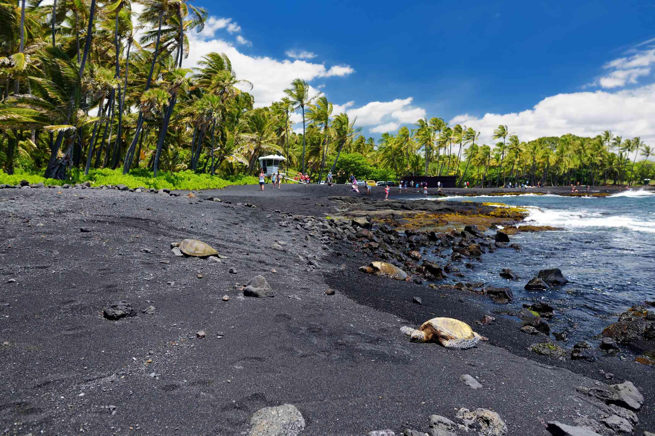 Playa de arena negra de Punalu'u, Hawái, EE. UU.