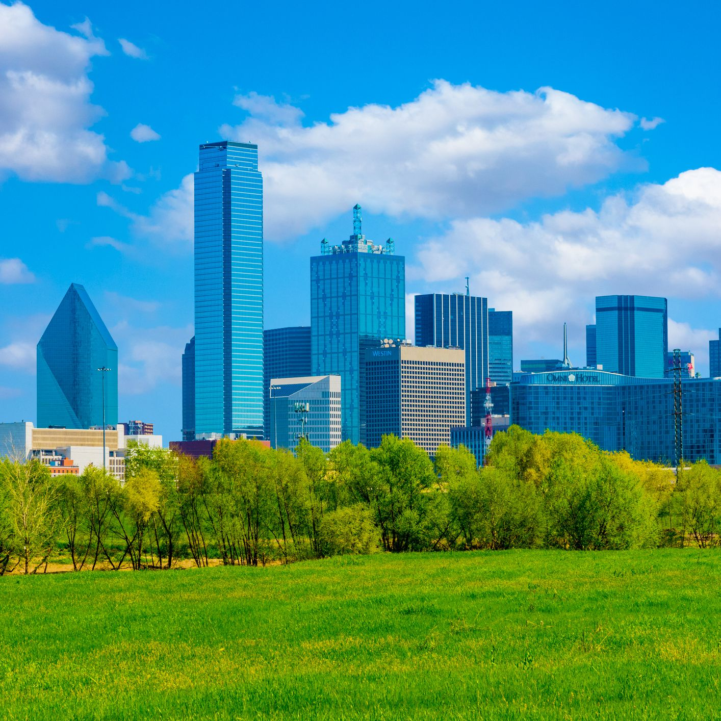 The Top 18 Things to Do in Dallas