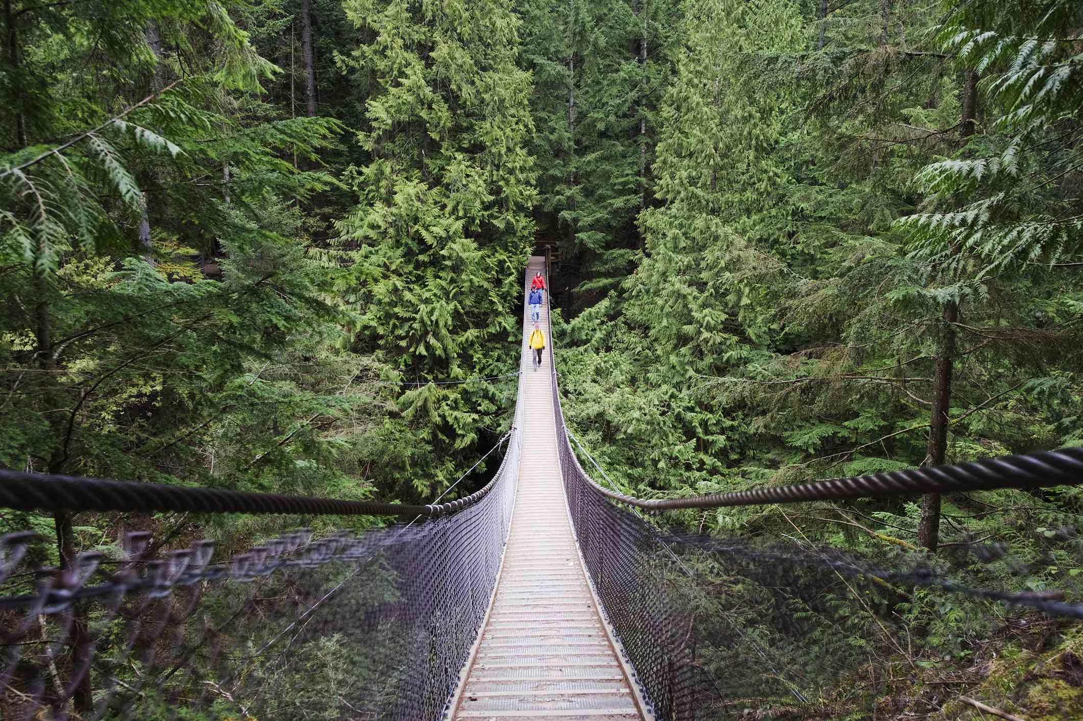 Suspension bridge at Lynn Canyon Park in Vancouver