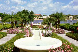Flowers and plants in a garden, Hollis Garden, Lake Mirror, Lakeland, Florida, USA
